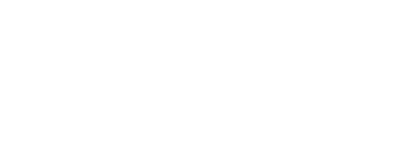 DOMIRUTH TRAVEL SERVICE SAC